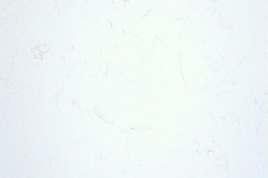 GT8155 Namibia White